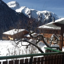 Perce Neige Chatel